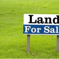 Plots For Sale In Pyla Larnaca 090918825